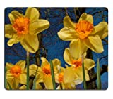 Yellow Daffodils Field tree branches blue sky daffodil flower Mouse Pads Customized Made to Order Support Ready 9 7/8 Inch (250mm) X 7 7/8 Inch (200mm) X 1/16 Inch (2mm) Eco Friendly Cloth with Neoprene Rubber Liil Mouse Pad Desktop Mousepad Laptop Mousepads Comfortable Computer Mouse Mat Cute Gaming Mouse_pad