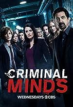 Criminal Minds Season 13 (5 Disc Set)