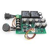 RUIZHI Controlador de motor de CC, DC 9-50V 40A Control de velocidad del motor de CC Controlador PWM...