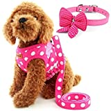Cute Small Dog Harness, Ladies Polka Dots Dog Vest Harness Set with Pink Leash and Bowknot Collar, 3 in 1 Girl Style Vest Harness Set for Puppy and Cat (M, Pink)