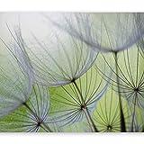 murando - Fototapete selbstklebend Pusteblume 294x210 cm Tapete Wandtapete Wandbilder Klebefolie Dekofolie Tapetenfolie Wand Dekoration Wohnzimmer - Blumen Natur grün 10110906-71