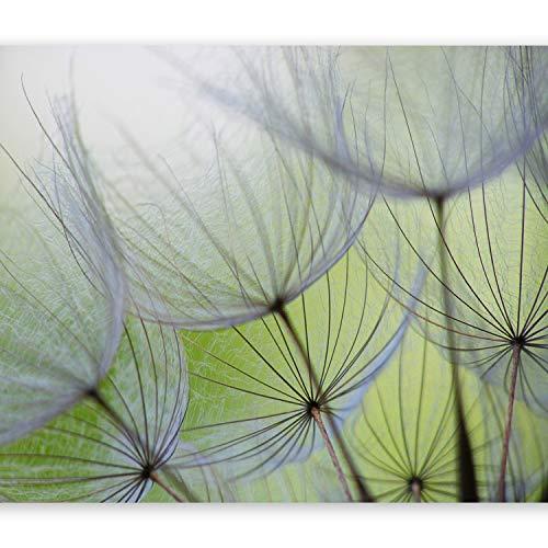 murando Fototapete selbstklebend Pusteblume 294x210 cm Tapete Wandtapete Klebefolie Dekorfolie Tapetenfolie Wand Dekoration Wandaufkleber Wohnzimmer Blumen Natur grün 10110906-71