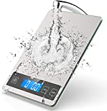Kitchen Scales,22lb/10kg Digital Scales Kitchen Weight Grams and Oz, Electronic Food Scale with Back-Lit LCD Display,1g/0.1oz Precise with Stainless Steel and Tempered Glass(Batteries Included)