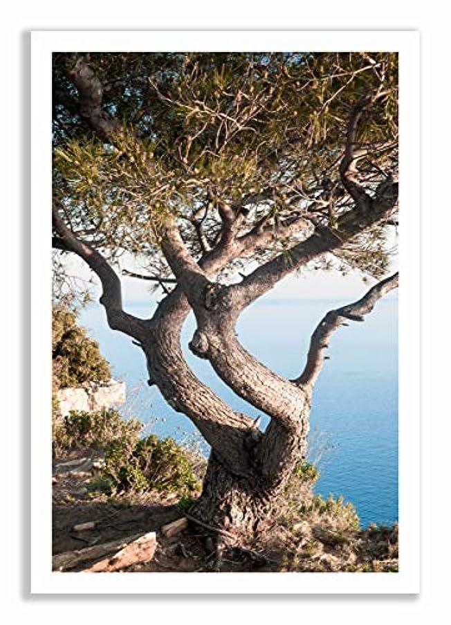 Route de Cretes - Black Satin Aluminium Frame - Full Format, Multicolored, 70x100