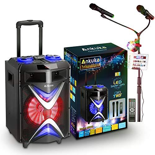 Ankuka Portable Bluetooth Karaoke Machine