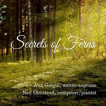 Secrets of Ferns