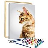 AiN Katy - Polygon Cat - Pintura por números - Kit de manualidades de lienzo con marco, pinturas, pinceles, para adultos, niños, principiantes, perfecto como cuadro de pared, póster.