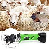 IDABAY Tondeuse à Moutons Électrique sans Fil Machine Tondage Brebis Professionnelle 9 Lames Droits 200W