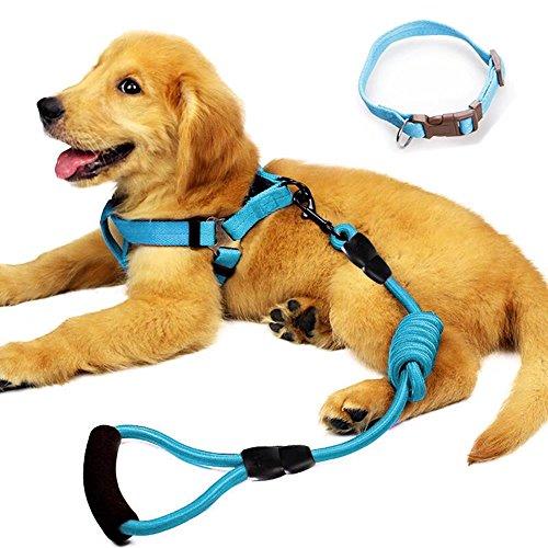 YUSENPET Dog Leash Harness Set