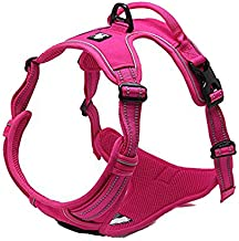 TRUE LOVE Adjustable No-Pull Dog Harness Reflective Pup Vest Harnesses Comfortable Control Brilliant Colors Truelove TLH5651(Fushcia,M)