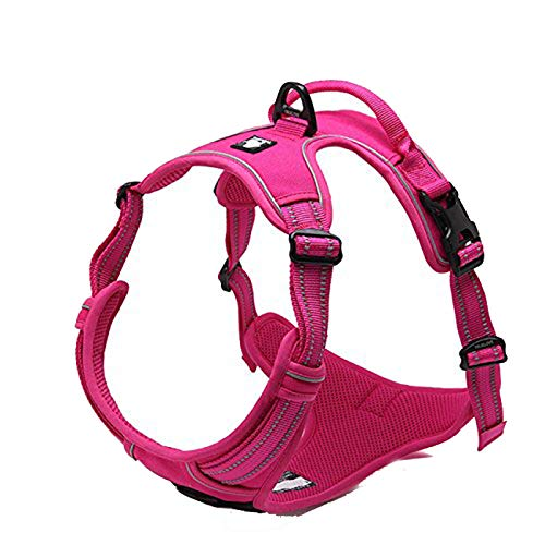 TRUE LOVE Adjustable No-Pull Dog Harness Reflective Pup Vest Harnesses Comfortable Control Brilliant Colors Truelove TLH5651(Fushcia,M)