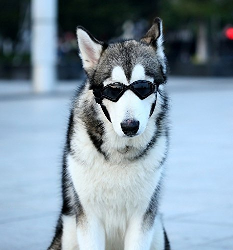 Namsan Hund Brille V-Sonnenbrille UV-Schutz Fashion Eyewear Goggles für Groß Hunde Haustier, Schwarz