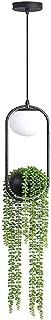 Boddenly Plant Hanger Lantern with Hanging Planter, Modern Pendant Lamp Hanging Lamp Plant Flower Pot Chandelier Ceiling Light Creative Iron Dining Room Pastoral Office Light Fixture Home Decoration
