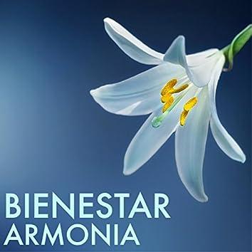 Bienestar y Armonia - Canciones para Pensamientos Positivos, Meditación, Relajación, Yoga