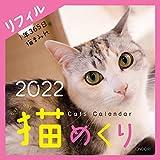 シーオーツー 猫めくり 2022年 カレンダー リフィル 日めくり CK-C22-02