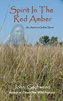 Spirit In The Red Amber, A novel of an American Indian by [John Gschwend]