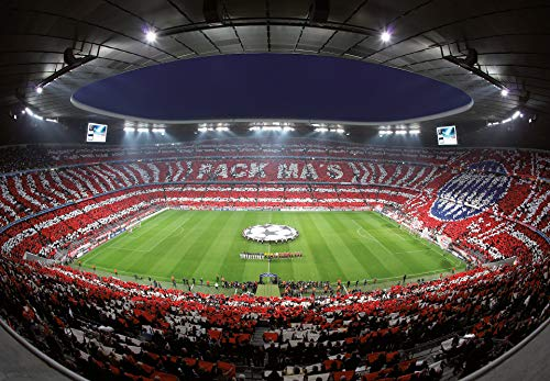 Fototapete FC Bayern Pack Ma`s Papiertapete Fußball in rot grün grau blau 366 x 254 cm XXL Wandtapete Wandbild 118845