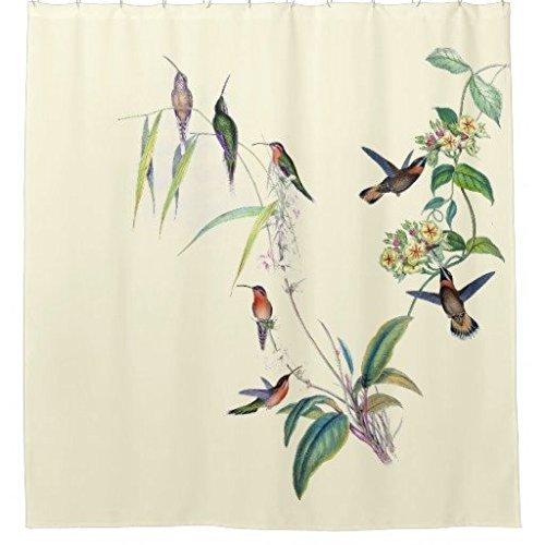 CHATAE Chilen Duschvorhang mit Kolibri, Vögel, Tiere, Blumen, 183 x 183 cm, für Badezimmer, Polyester, maschinenwaschbar – Duschhaken sind im Lieferumfang enthalten