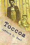 Toccoa: Dark secrets of a small, Georgia town