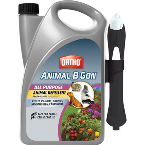 Ortho Animal B Gon All Purpose Animal Repellent Ready-to-Use Spray, 1-Gallon (Squirrel, Groundhog, Rabbit and Other Small Herbivore Repellent)