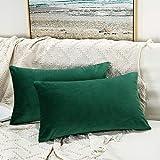 JUSPURBET Dark Green Decorative Lumbar Velvet Throw...