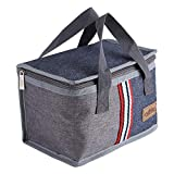 Insulated Lunch Bag, Portable Tote Thermal Cooler Lunch Travel Picnic Storage Food Box