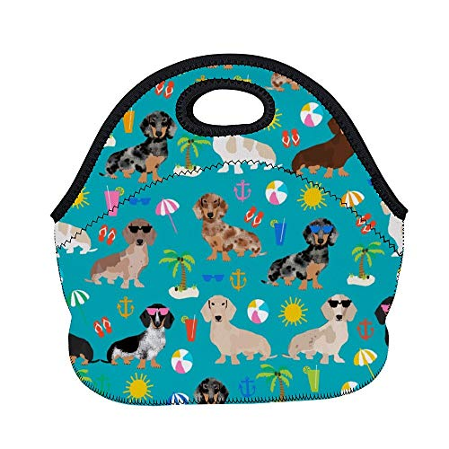 Aeoiba LunchBags BEACH DAY Ideal Gifts - Insulated Lunch Bag Dachshund Dog Bento Lunch Bag Thermal Cooler Lunch Pouch with Portable Carrying Bag for Men & Women & Kids & Girls & Boys