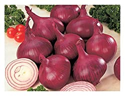 when to grow onions january