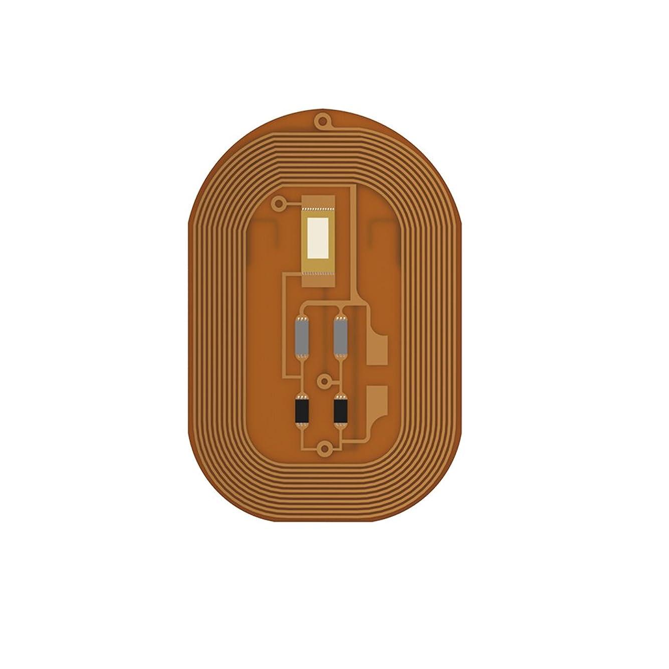適応物思いにふけるあるIPOTCH ネイルチップ スマートネイル 厚さ0.1mm CE認証  NFCチップ LED ステッカー