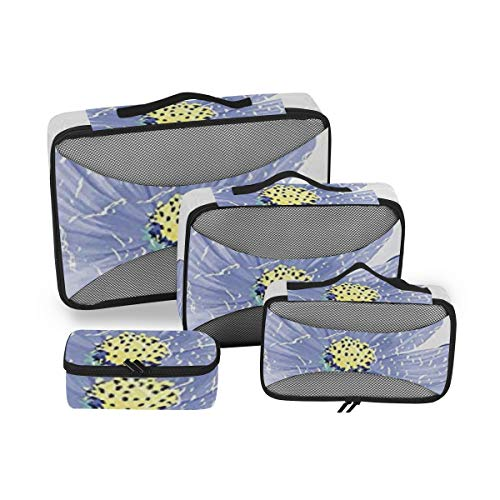 Garden Decor 4pcs Toiletry Bag for Men and Women Travel Organizer for Makeup and Toiletries Case for Cosmetics and Toilet Accessories