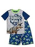 LEGO Jurassic World Boy's T-Rex 2 Piece Pajama Set Boys, 10/12 Navy