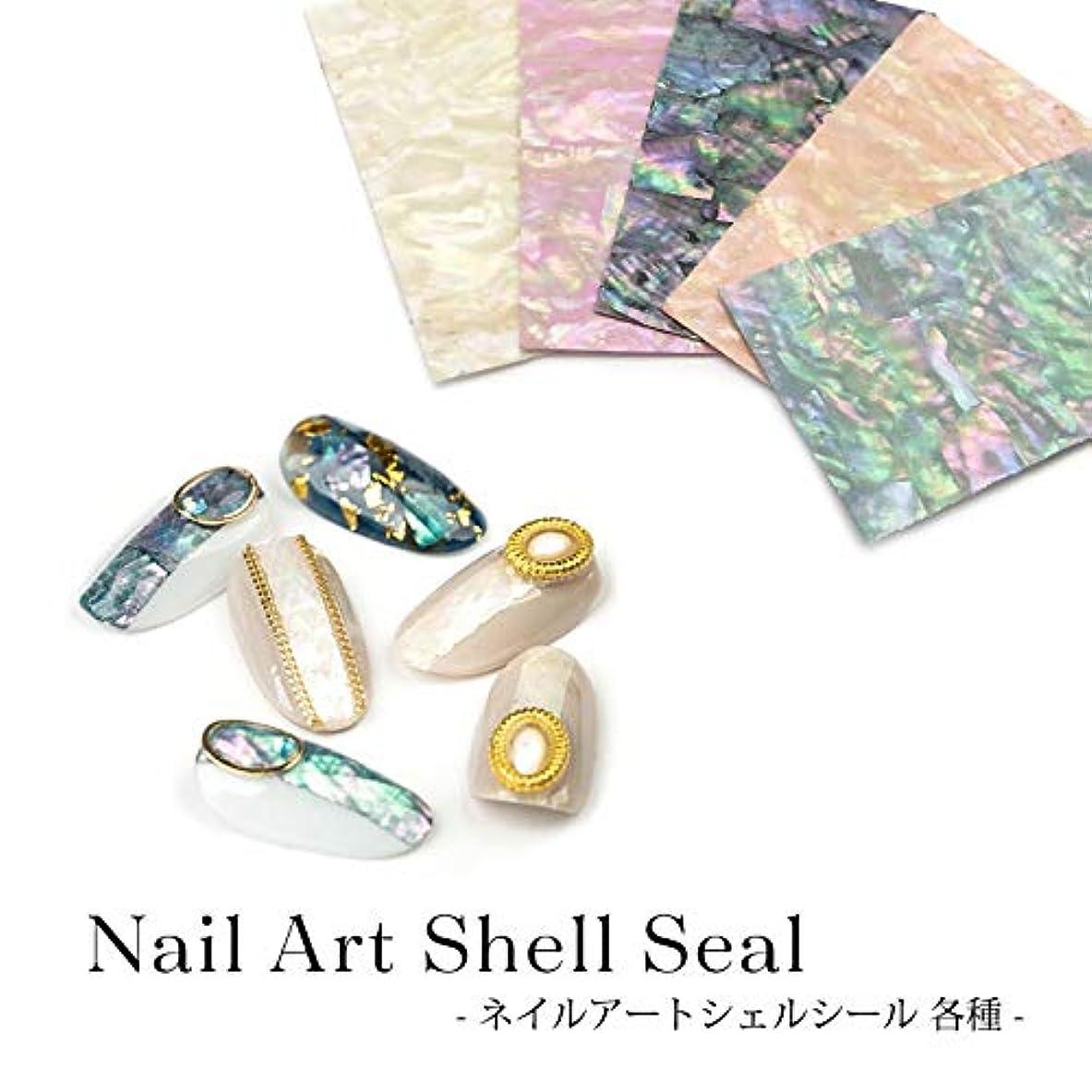 ケープ寝室を掃除する企業ネイル アート シェルシール 各種 1枚入り (5.アクア系)