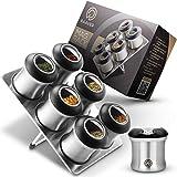 Raaver MagRack, l'originale – Portaspezie magnetico – Barattoli per alimenti in vero acciaio inox con inserto senza BPA – 6 spargitori e 1 piatto – Design top