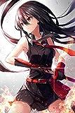 Akame ga Kill! Poster - Japan Anime Metal Poster 12