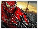 Spiderman DIY Diamant Bande De Résine De Diamant Mosaïque 5DDIY Diamant Broderie...