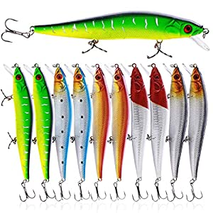 Sougayilang Fishing Lures Hard Bait Minnow Crankbait with Treble Hook Life-Like Swimbait Fishing Bait Deep Diver Lure Sinking Lure for Bass Trout Fishing Pack of 10PCS