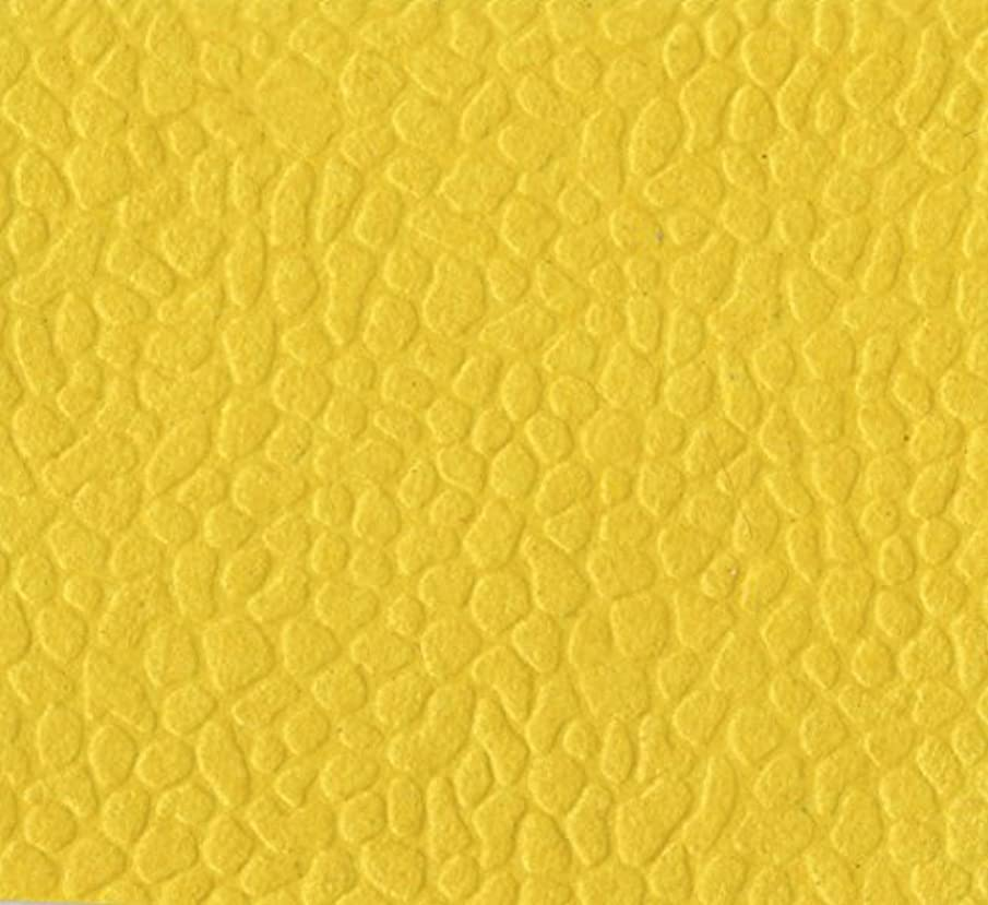 Clairefontaine 50 x 70 cm, Handmade Embossed Papers, 10 Sheets, Sunny Yellow