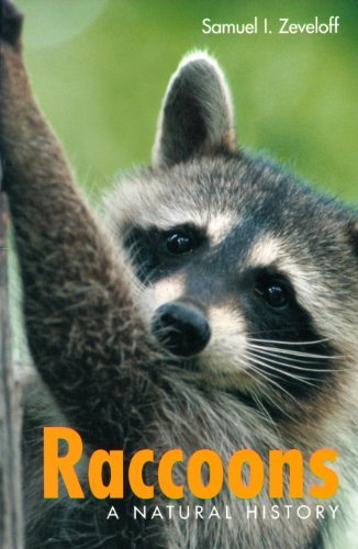 Raccoons: A Natural History (English Edition)