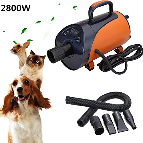 Iglobalbuy 2800W Profi Fellpfelge cane asciugacapelli per cani