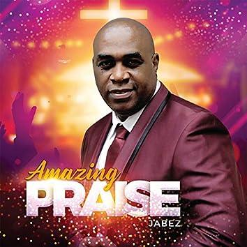 Amazing Praise