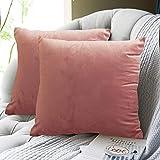 FRECINQ Fundas Cojines 45x45cm Cojines Sofa 2 Piezas Velvet Suave Funda de Almohada para el Sofa Sillas Jardín Decoración Coche Sala de Estar( rosa)