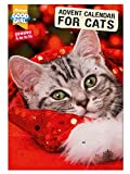 GOOD GIRL ADVENT CALENDAR WITH CATNIP TREATS BEHIND EVERY DOOR PAWSLEY & HO HO HO CAT ADVENT CALENDAR