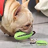 Hundezahnbürste ,Hundespielzeug Kauspielzeug,Ball Leckerli-Spender für Hunde Welpen-Zahnpflege, ungiftig Bite resistent Hund Zahnbürsten Stick