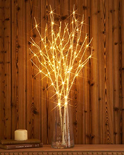 Hairui Lighted Artificial Twig Birch Tree Branch with Fairy Lights 32IN 100 LED Battery Operated Lighted White Willow Branch for Thanksgiving Christmas Wedding Summer Decoration (Vase Excluded)