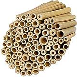 BELLE VOUS Tutores para Plantas Estacas de Bambú Natural (Pack de 100) 10...