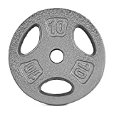 CAP Barbell Standard 1-Inch Grip Weight Plates, Single, Gray, 10 Pound...
