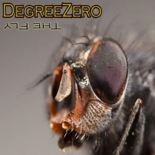 Degreezero