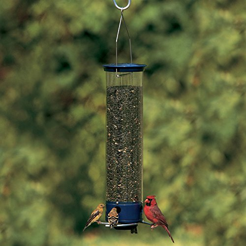 Droll Yankees 21964205201 787461785928 Squirrel Proof Bird Feeder, Yankee Whipper, 28-Inch, 4 P, Evening Blue