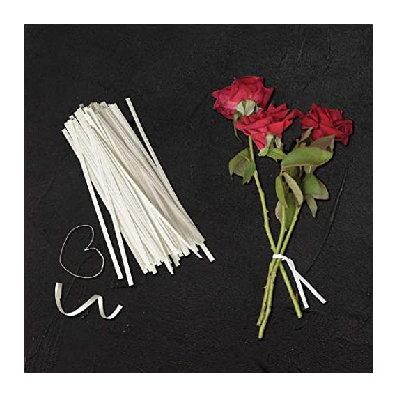 Twies 5 Inch Paper Twist Ties 200 Pcs   Reusable Bread Ties for Party Cello Candy Coffee Treat Bags Cake Pops - White 6 ⭐Economy Pack: Pack of 200 twist ties for bags, ample supply to meet multiple needs. Reusable tie, this one-time purchase will serve you for long ⭐Adequate Length: 5 inches twist tie, long enough to serve the purpose of tying tightly and does not open up at its own ⭐Durable: Made of premium quality paper with inner strong, non-breakable metal wire. Durable for every weather, use twisty ties for indoor and outdoor needs