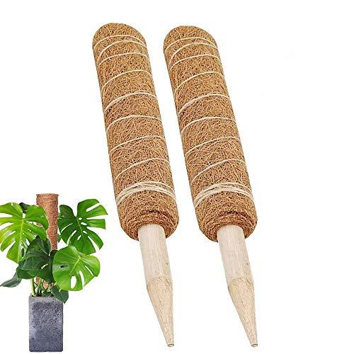 Gfdg Kokos Totempfahl, 2 Stück Kokos Stangen,Coir Totem Pole, Pflanzenstütze Totempfahl, Rankstab Rankhilfe Blumenstab, Kokos Moos Stick Kokos,für Pflanzenunterstützung Klettern Pflanzenstab(30CM)